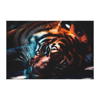Tiger In Repose Canvas Print