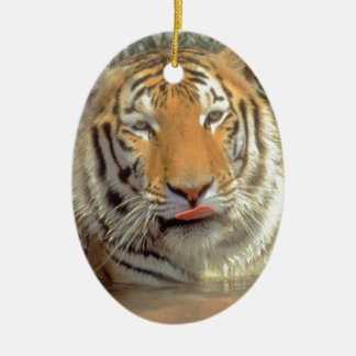 Tiger in water Close Up Christmas Ornament