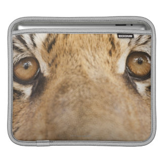 Tiger iPad Sleeve