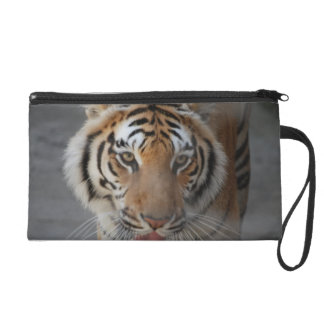Tiger Kisses Wristlet