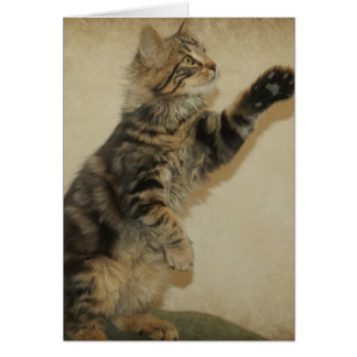 Tiger Kitten Notecard - Playing