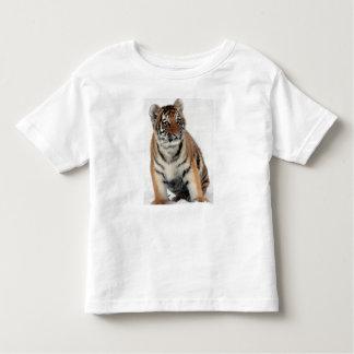 Tiger Kitty Toddler T-Shirt