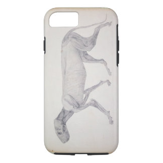 Tiger: Lateral View, Partially Dissected, from the iPhone 8/7 Case