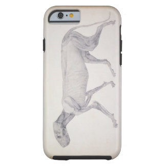 Tiger: Lateral View, Partially Dissected, from the Tough iPhone 6 Case