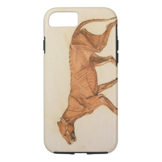 Tiger, Lateral View, Skin Removed, from 'A Compara iPhone 8/7 Case