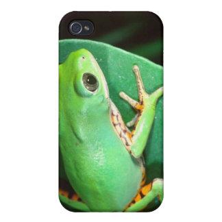 Tiger Leg Monkey Frog, Phyllomedusa iPhone 4/4S Cases