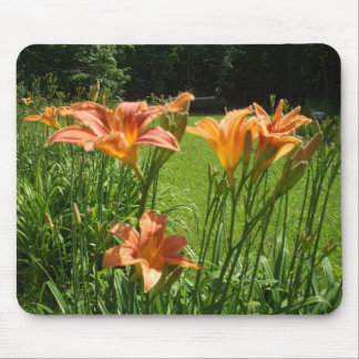 Tiger Lilies Mouse Pad