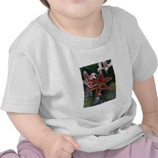 Tiger Lily 2002 Winter Park CO art1z Shirt