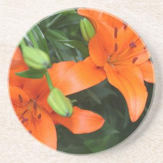 Tiger Lily Drink Coaster