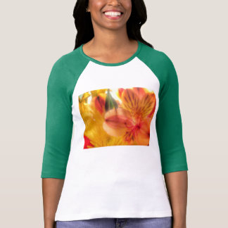 tiger lily raglan shirt ladies
