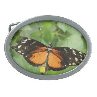 Tiger Longwing Butterfly Belt Buckle