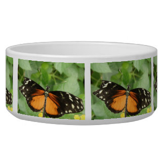 Tiger Longwing Butterfly Dog Bowl