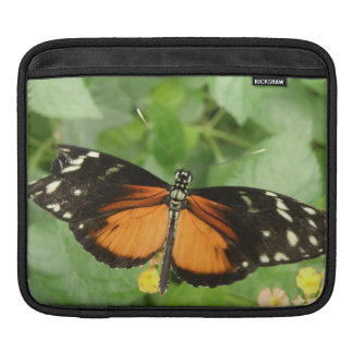 Tiger Longwing Butterfly IPad Sleeve