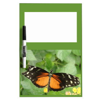 Tiger Longwing Butterfly Memo Board