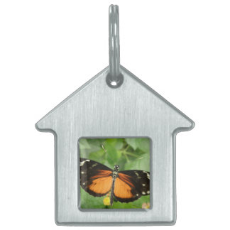 Tiger Longwing Butterfly Pet Tag
