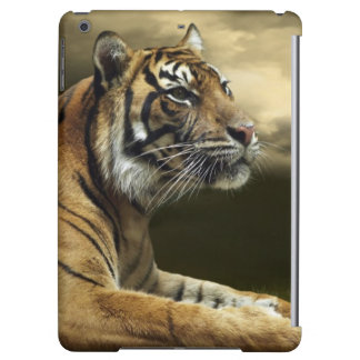 Tiger looking and sitting under dramatic sky cover for iPad air