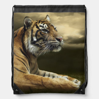 Tiger looking and sitting under dramatic sky drawstring bag