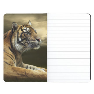 Tiger looking and sitting under dramatic sky journal