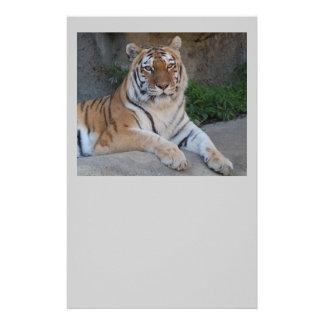 Tiger Love Stationery