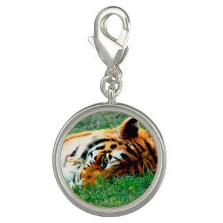 Tiger Lying down Charm Bracelet