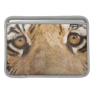 Tiger MacBook Sleeve