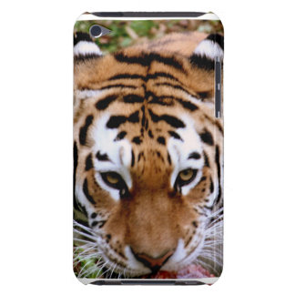Tiger Markings  iTouch Case Barely There iPod Cases