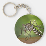 Tiger mosquito keychain