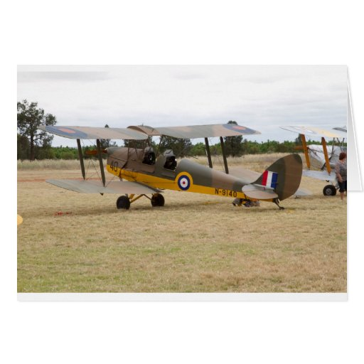 Tiger Moth 80Th Anniversary Fly-in Greeting Cards