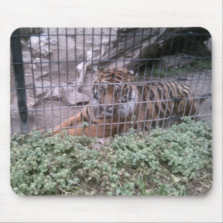 Tiger Mouse Mat