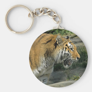 Tiger Mouth Open Keychain