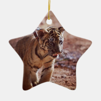 Tiger on a lead ceramic star decoration