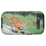 Tiger on path samsung galaxy s3 cover