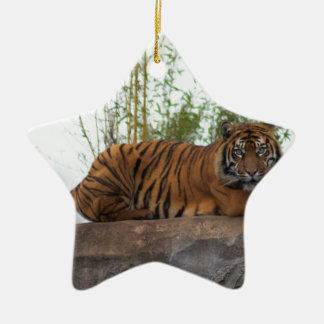 Tiger on the rocks ceramic star decoration