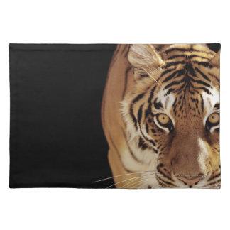 Tiger (Panthera tigris) Placemat