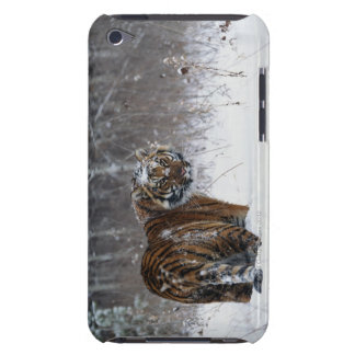 Tiger (Panthera tigris) standing in deep snow Barely There iPod Cases