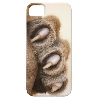 Tiger paw iPhone 5 cases