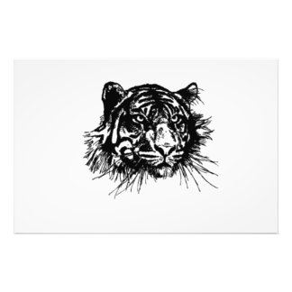 Tiger Photo Art