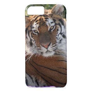 Tiger Photo iPhone Case