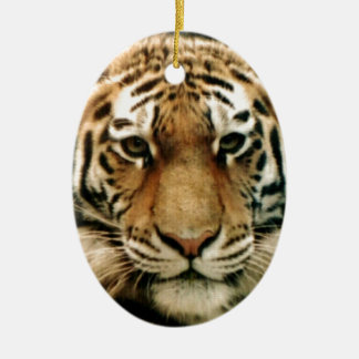 Tiger Picture Close Up Ceramic Oval Decoration