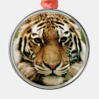 Tiger Picture Close Up Christmas Ornament