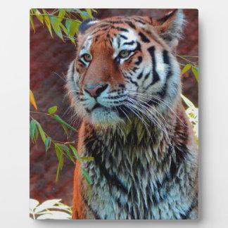Tiger Plaque