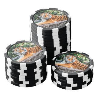 Tiger Poker Chips
