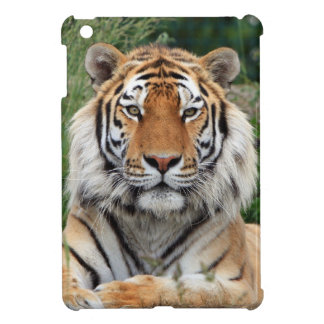 Tiger portrait beautiful close-up photo, gift iPad mini cover