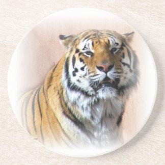 Tiger portrait coaster