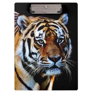 Tiger Predator Clipboard