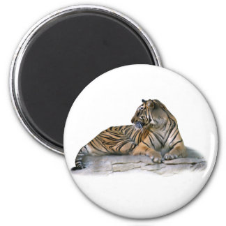 Tiger, Reclining Magnets