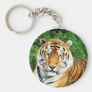 Tiger Relaxing Basic Round Button Key Ring