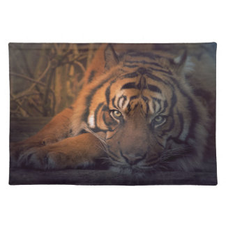 Tiger resting at night placemat