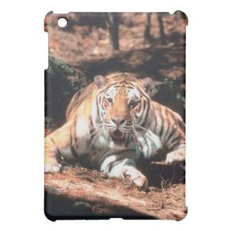 Tiger resting iPad mini cover