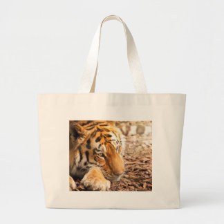 Tiger resting large tote bag